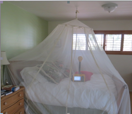 RF shielding Bed Canopy